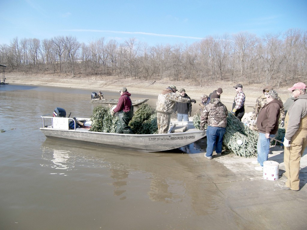 Photo by Barry Featheringill Volunteers load donated Christmas trees into a boat before then taking them out to various locations and submerging them across Lake Shelbyville Saturday. More than 100 participants were present to disperse 482 trees and 70 artificial structures in an effort to improve fish habitats.