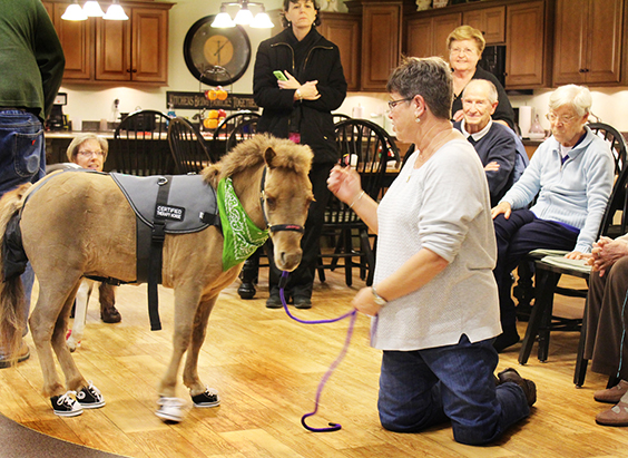 File Photo Andrea Ebert and Jasper brought mini horse therapy to an Aspen Creek visit.